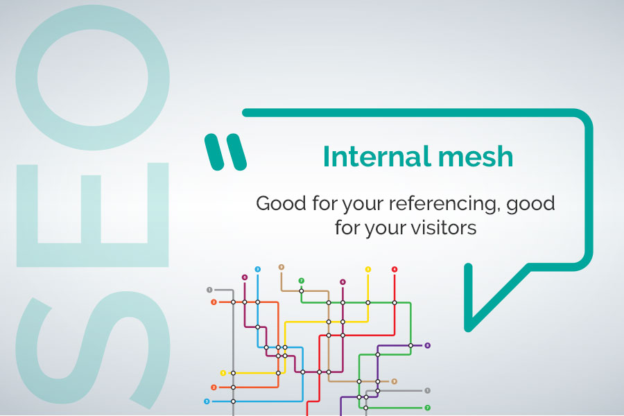 internal mesh